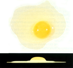 A grading egg for homemade cookies